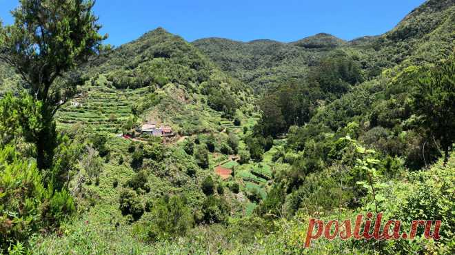 Экскурсия на остров Ла Гомера - заповедник Канарских островов | Туризм в Испании