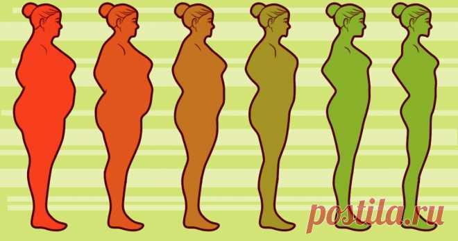 8 способов перестать переедать и забыть о постоянном чувстве голода . Милая Я