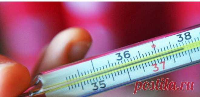 Щоб перевірити свою щитовидку, потрібен тільки термометр! — Лампа.ua