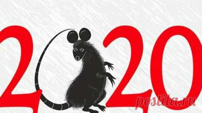Стихи-поздравления с Новым Годом 2020 (годом Крысы) | Ателье