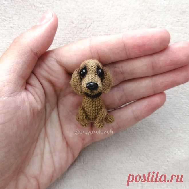 PDF Таксёныш крючком. FREE crochet pattern; Аmigurumi animal patterns. Амигуруми схемы и описания на русском. Вязаные игрушки и поделки своими руками #amimore - такса, собака, пёс, собачка, щенок, пёсик.