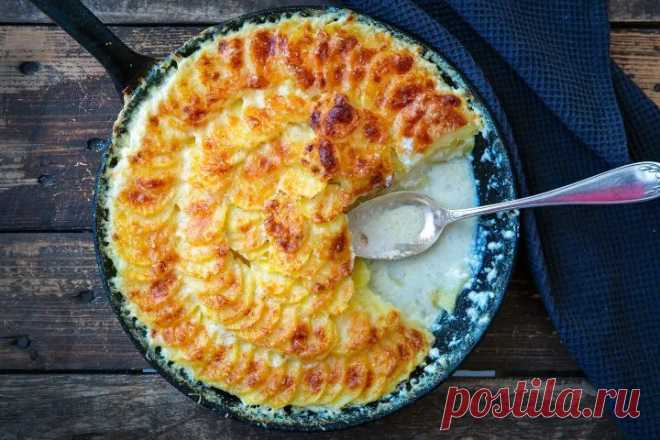 Kartoffelgratin - ein französischer Klassiker - Madame Cuisine
