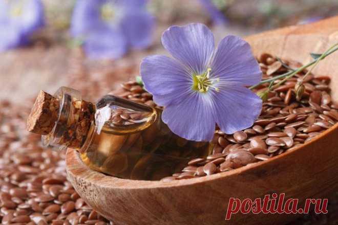 Семена льна — 7+ полезных свойств и правила приема