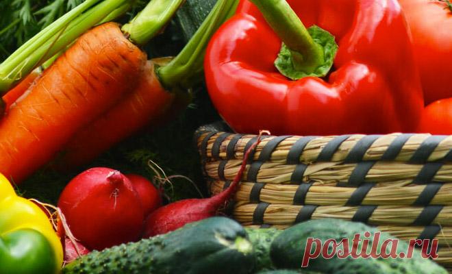 Как спасти подпортившиеся продукты