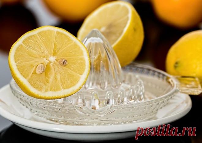 Как лимон понижает давление. 3 рецепта для гипертоников   Таня на пенсии   Яндекс Дзен