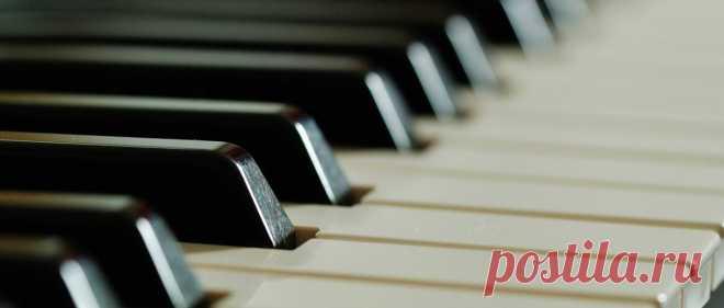 На каком музыкальном инструменте легче всего научиться, учитывая, что я взрослый и никогда не занимался музыкой? | Классическая ГИТАРА | Яндекс Дзен