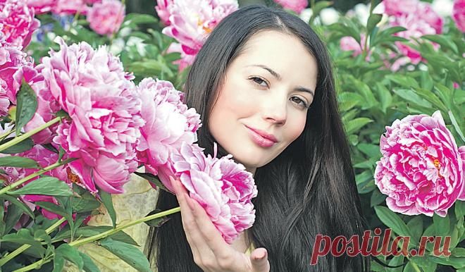 Цветы пионы: посадка и уход в открытом грунте