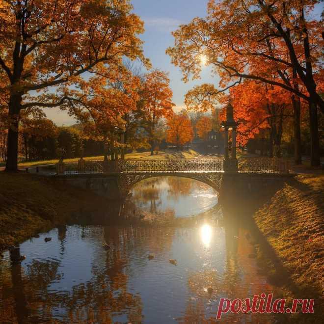 Картинки спасибо господи за все что есть за эту потрясающую осень