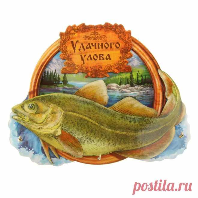 Картинки хорошей рыбалки