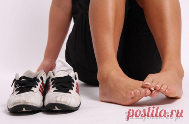 Действенные способы, как устранить потливость ног и надолго избавиться от запаха Проблема потных ног и неприятного запаха, исходящего от обуви, знакома многим людям, особенно в жару. К сожалению, этот процесс естественный и предотвратить его невозможно. Организм, выделяя пот, таки...