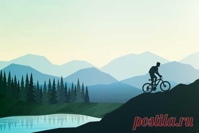 Как велосипед влияет на здоровье организма —и на мозг в частности?