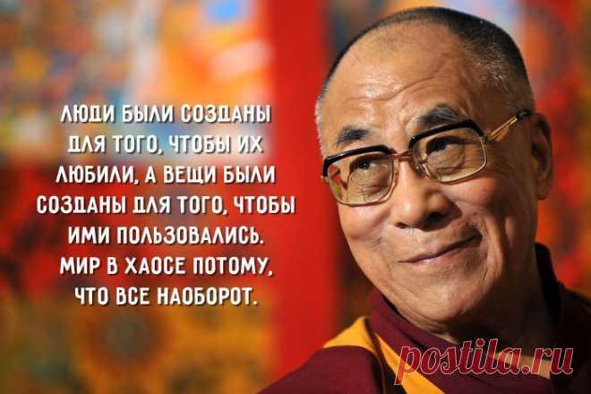 Планете не нужно большое количество «успешных людей». Планета отчаянно нуждается в миротворцах, целителях, реставраторах, сказочниках и любящих всех видов. Она нуждается в людях, рядом с которыми хорошо жить. Планета нуждается в людях с моралью и любовью, которые сделают мир живым и гуманным. А эти качества имеют мало общего с «успехом», как он определяется в нашем обществе.