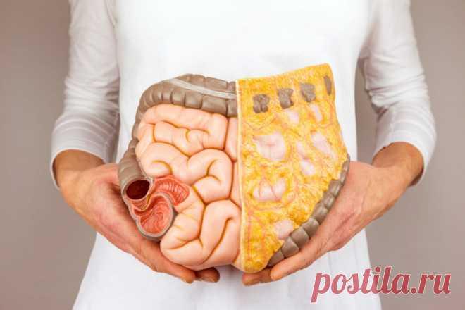 10 продуктов для очистки организма от шлаков и токсинов | Здоровье с удовольствием | Яндекс Дзен