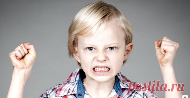 Причины детской агрессии, что делать родителям   Ребята-дошколята   Яндекс Дзен