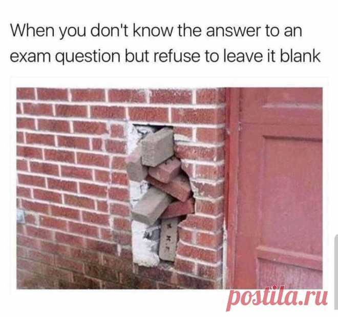 When You Don't Know The Answer | Gag Bee  #funny #memes #girls #boys #gagbee