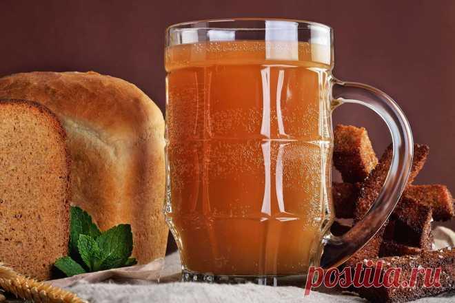 Напиток на дрожжах с цикорием: как приготовить домашний квас