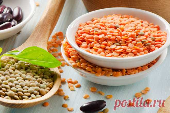 Secrets about lentil about which you did not know!