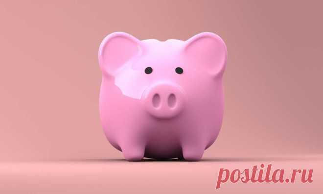 Школьников будут учить финансовой грамотности с 1 класса - Телеканал «О!»