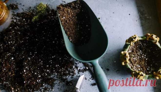Земельный вопрос: зачем нужно уметь определять тип почвы? | 6 соток