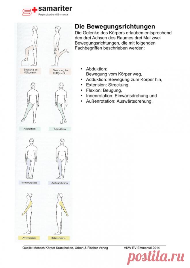 Die Bewegungsrichtungen