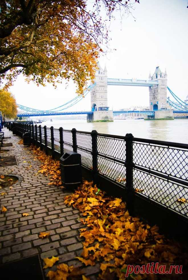 Autumn London. Thames Embankment. Londonskaya Embankment of Victoria was built in 1868-1874. Now it is one of favourite places for...