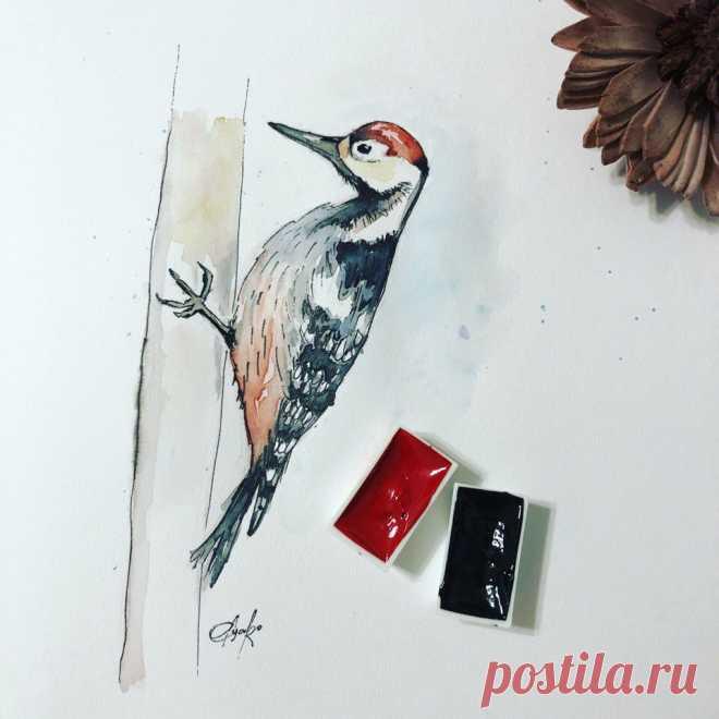 Дятел акварелью. Скетч. Watercolor woodpecker