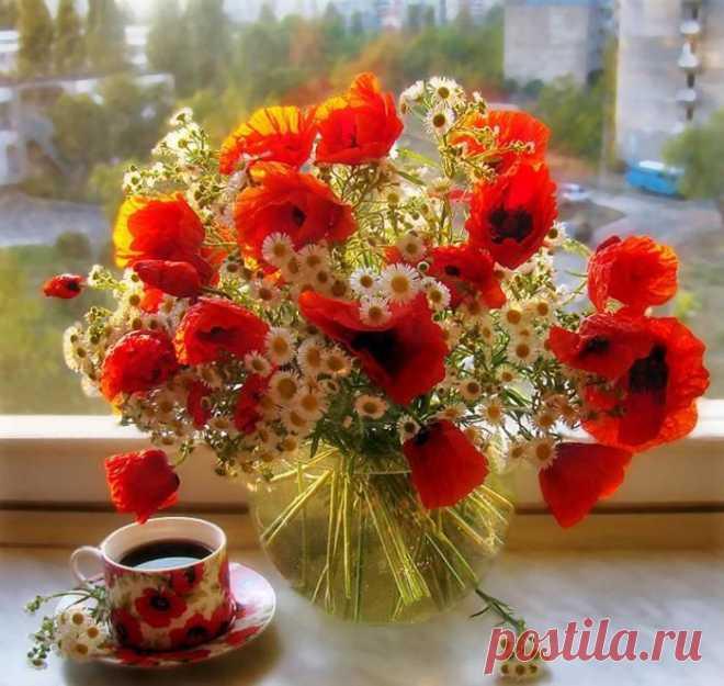 Мужчине летие, открытки цветы красивые букеты с добрым утром