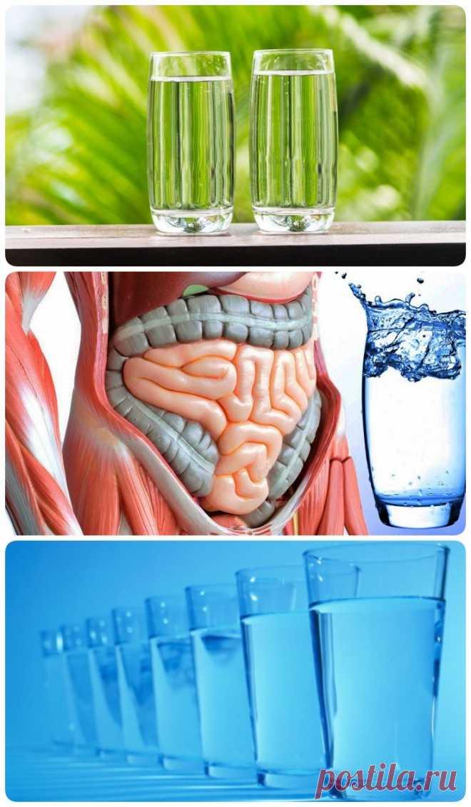 9 преимуществ пить воду натощак - My izumrud