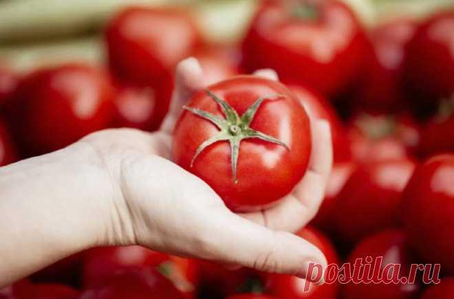 """Мама подсказала, что делать если в магазине купила """"пластиковые"""" невкусные помидоры"""