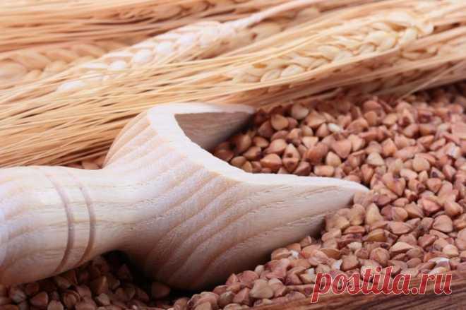 О ПОЛЬЗЕ ГРЕЧКИ - Журнал Советов 1. По содержанию незаменимых аминокислот белок гречихи приближается к продуктам животного происхождения и потому считается равноценной заменой мяса. При этом усваивается греча намного лучше. 2. Гречка стабилизирует уровень сахара в крови. После употребления гречневой каши в пищу, уровень сахара повышается медленно, а не скачкообразно, как при употреблении других углеводсодержащих продуктов. 3. Гречневая крупа богата фолиевой […]