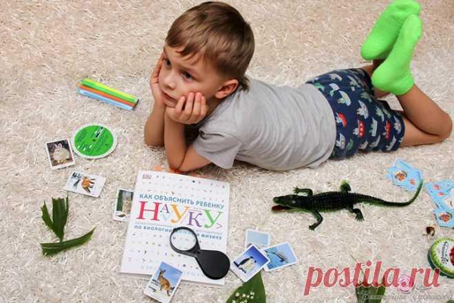 """Иллюстрированный справочник """"Как объяснить ребенку науку"""" ( станет отличным помощником для родителей, которые хотят помочь своим детям в освоении биологии, химии и физики. В книге доступно и наглядно объясняются основные понятия этих важнейших естественнонаучных дисциплин. Сложный материал воспринимается быстрее и лучше благодаря наглядным примерам с четкими схемами, диаграммами и рисунками, которые сопровождаются подробными пояснениями. Многие родители учились в школе давно и их…"""