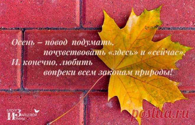 Душевные красивые стихи про осень | Блог Ирины Зайцевой