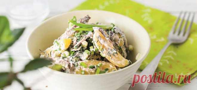 Картофельный салат с говядиной - Образованная Сова