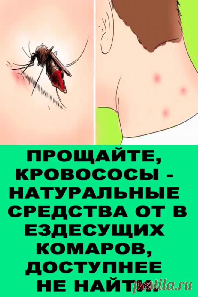 Прощайте, кровососы — Натуральные средства от вездесущих комаров, доступнее не найти. — Женские Советы