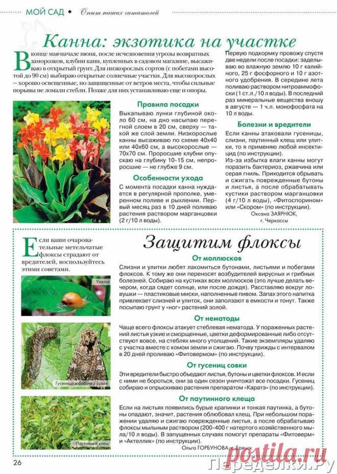 Цветок №10 май 2020 | ПЕРЕДЕЛКИ.рУПЕРЕДЕЛКИ.рУ