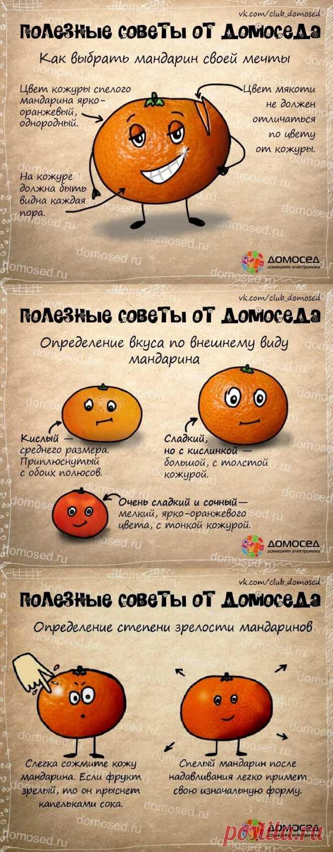 Как выбрать мандарины - полезные советы от домоседа