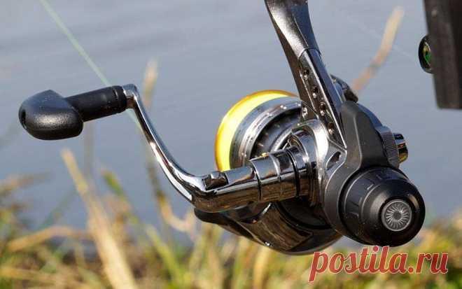 Рыбалка: выбираем катушку для спиннинга | Новости