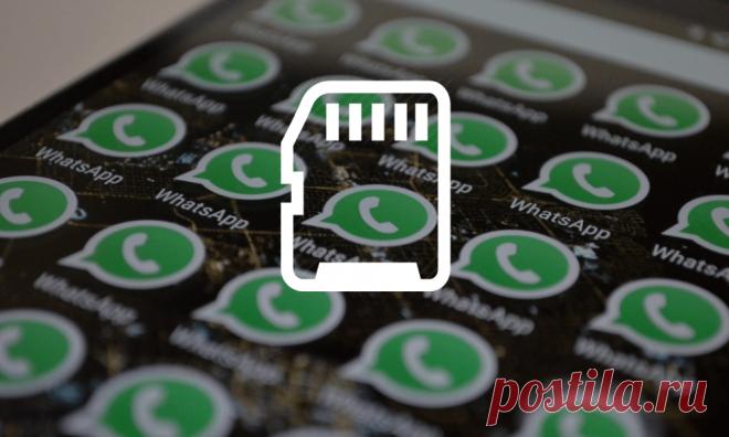 WhatsApp забивает память телефона — как её освободить? | Болтай