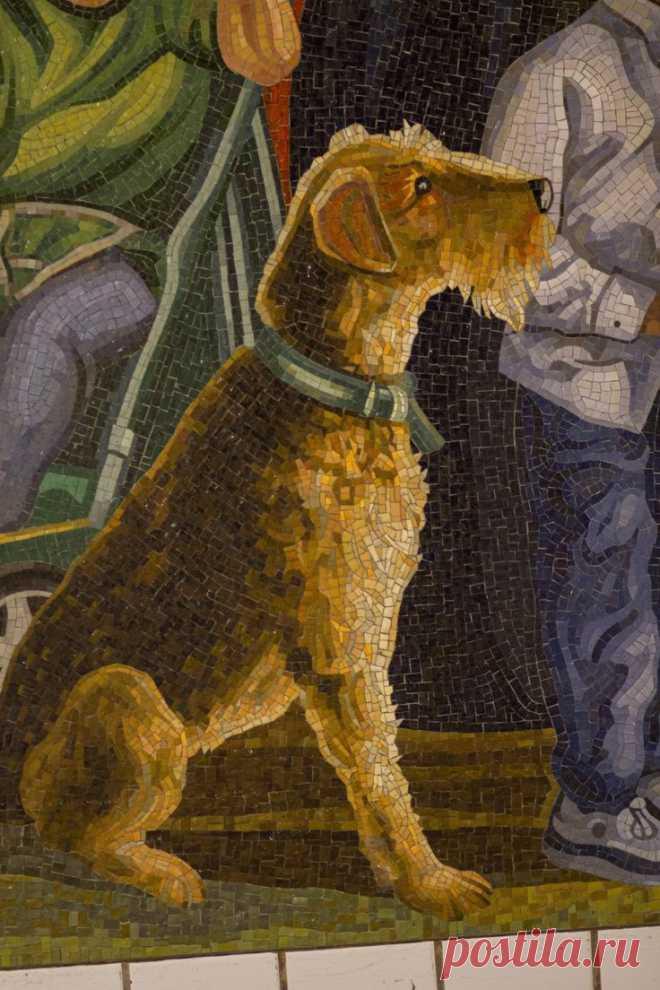 Dog Mosaic (Page 3) - Line.17QQ.com