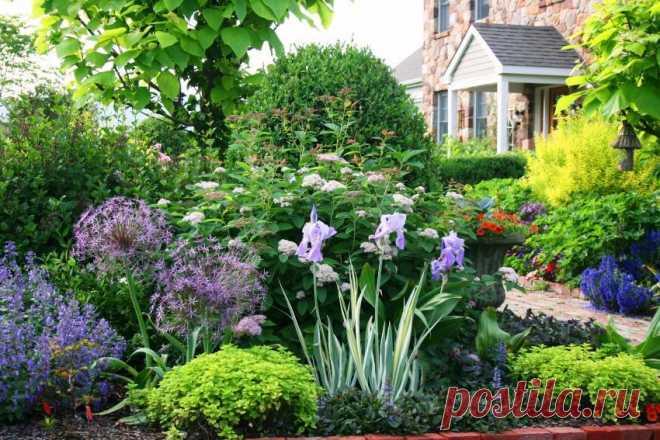 Что посадить на даче, чтобы не ухаживать, как организовать грядки Многих огородников и садоводов интересует, что посадить на даче. чтобы не ухаживать. Овощи удобнее выращивать на стационарных грядках, высадив зелень, тыкву