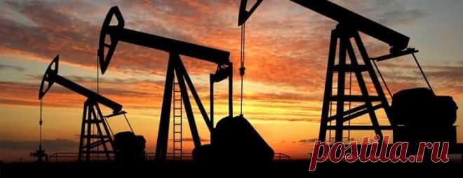 Кому принадлежат 7 самых крупных нефтяных компании России   NIEjournal.ru   Яндекс Дзен