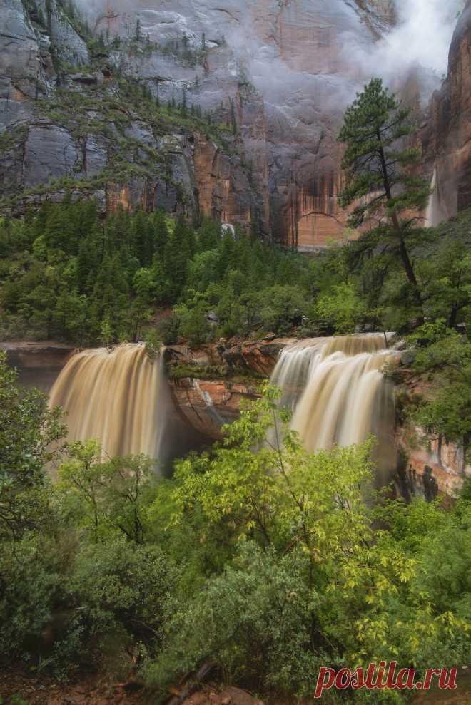 Zion Deluge | Bill Ratcliffe