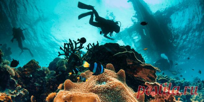 Филиппины – удивительные острова, интересные не только отдыхом | На всякий случай