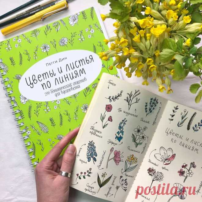 Рисуем цветы за пять минут: пошаговый метод и 200 ботанических сюжетов → mif.to/200bs ⠀ Тонкие веточки бузины и роскошные розовые бутоны, резные листья монстеры и причудливые лепестки ранункулюсов — вместе с книгой «Цветы и листья по линиям» вы сможете создавать самые разные ботанические иллюстрации. Даже если думаете, что совсем не умеете рисовать (в первую очередь если вы так думаете, да-да!). ⠀ Внутри — 200 уроков с простыми пошаговыми инструкциями, которые легко повторить. Кстати,…