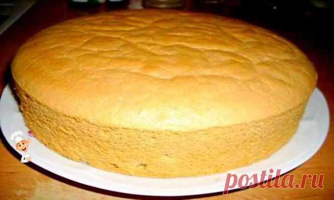 Бисквит для торта в духовке - Рецепты выпечки Бисквит для торта в духовке простой пошаговый рецепт. Итак, сегодня друзья будем готовить бисквит для торта в духовке. Ингредиентов для приготовления потребуется минимум. Сам же процесс приготовления бисквита для торта совсем не сложен и под силу любой хозяйке.