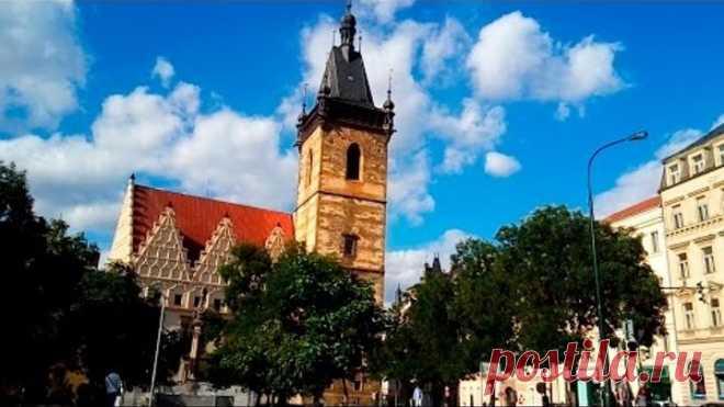 Novoměstská radnice, Praha 11 06 2016 Alexandr Stein