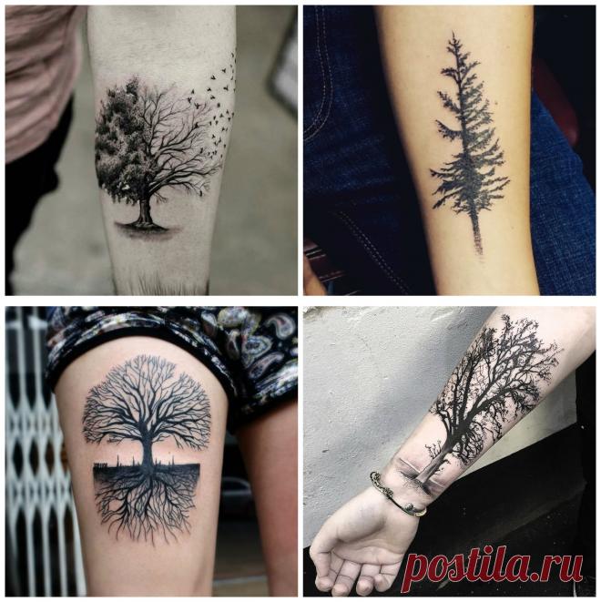 Tatuajes De Arboles Tatuajes Prefectas Con Diseños De Arboles Para