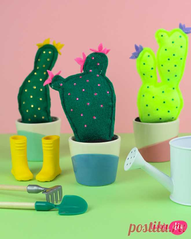 Cactuses from felt