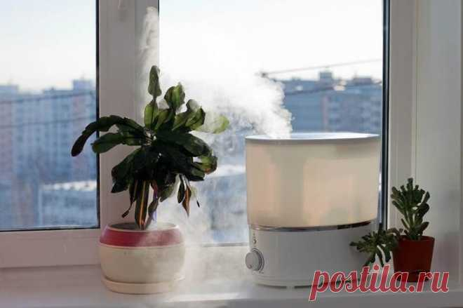 Как выбрать хороший увлажнитель воздуха Невыносимо сухой воздух — бич современных квартир с центральным отоплением. Невозможность отрегулировать температуру в доме приводит не только к нещадной жаре, но и к проблемам с дыханием. Однако совр...