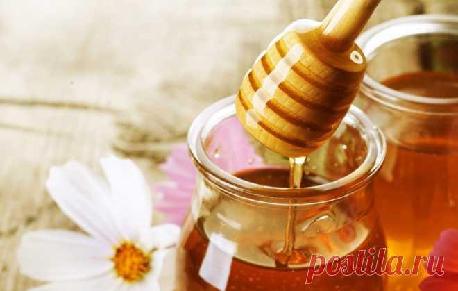 10 необычных свойств мёда, о которых ты не подозревал! - Женский Журнал  Думаешь, мёд годится только для того, чтобы намазать на хлеб или испечь торт? Ты очень удивишься, когда узнаешь о 10необычных свойствахэтого продукта. Оказывается, с его помощью можно вылечить ранки и прыщики, увлажнить сухую кожу, предотвратить сердечно-сосудистые заболевания, исцелить больное горло и многое другое! Способы применения мёда Небольшие ранки или ожоги можно лечить с помощью …
